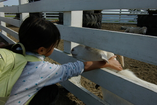 20091010_mather_farm_04.JPG